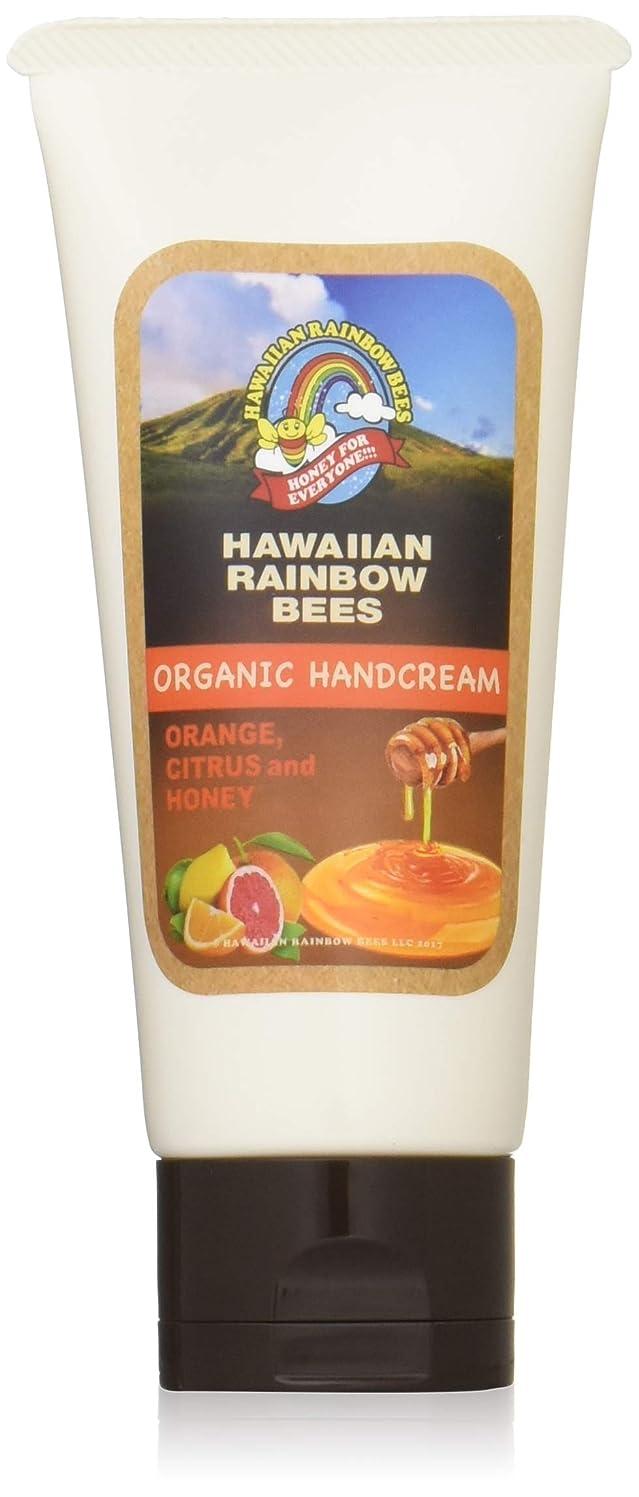 パラメータ累積洗剤ハワイアンレインボービーズ オーガニックハンドクリーム OC 60g 72123042