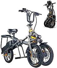 EggshellHome Bicicleta Eléctrica, Eléctrica Triciclo Plegable para Adultos Tres Ruedas, Bicicletas De Montaña Eléctrica, Scooter hasta 30 Km/H De La Batería De Litio Doble, Tres Modos De Velocidad