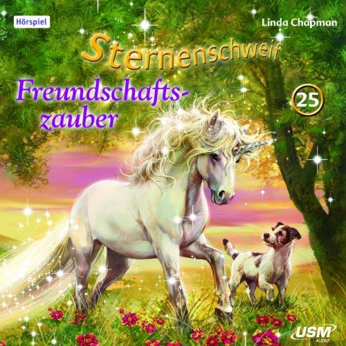 Freundschaftszauber audiobook cover art