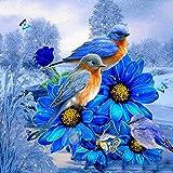 MXJSUA 5D Diamond Painting Kits de Taladro Completo Adultos Rhinestone Pegado Artes Artesanía Inicio Decoración de la Pared 30x30 cm Blue Bird