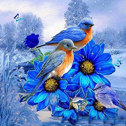 MXJSUA 5D Diamant Peinture Kits de Forage complets Strass collé Arts Artisanat Maison décoration Murale 30x30 cm Oiseau Bleu