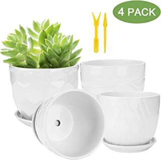 Flower Pots and Transplanter, Brajttt 5.5 Inch Cylinder Ceramic Plant Pots with Connected Saucer, Planters for Succuelnt and Little Snake Plants (4 Pack, White)