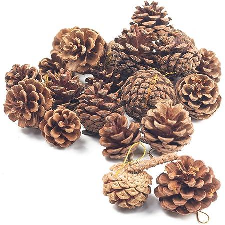 Fairy Garden Trim 1 to 2 Tiny Miniature Pine Cones 50+ pieces Free Shipping
