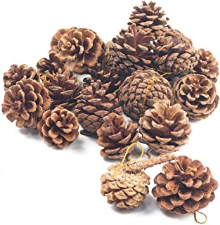 Johouse Natural Pine Cones, Christmas Rustic Pinecones Fall Garland Halloween Thanksgiving Decorations, Christmas Tree Fal...