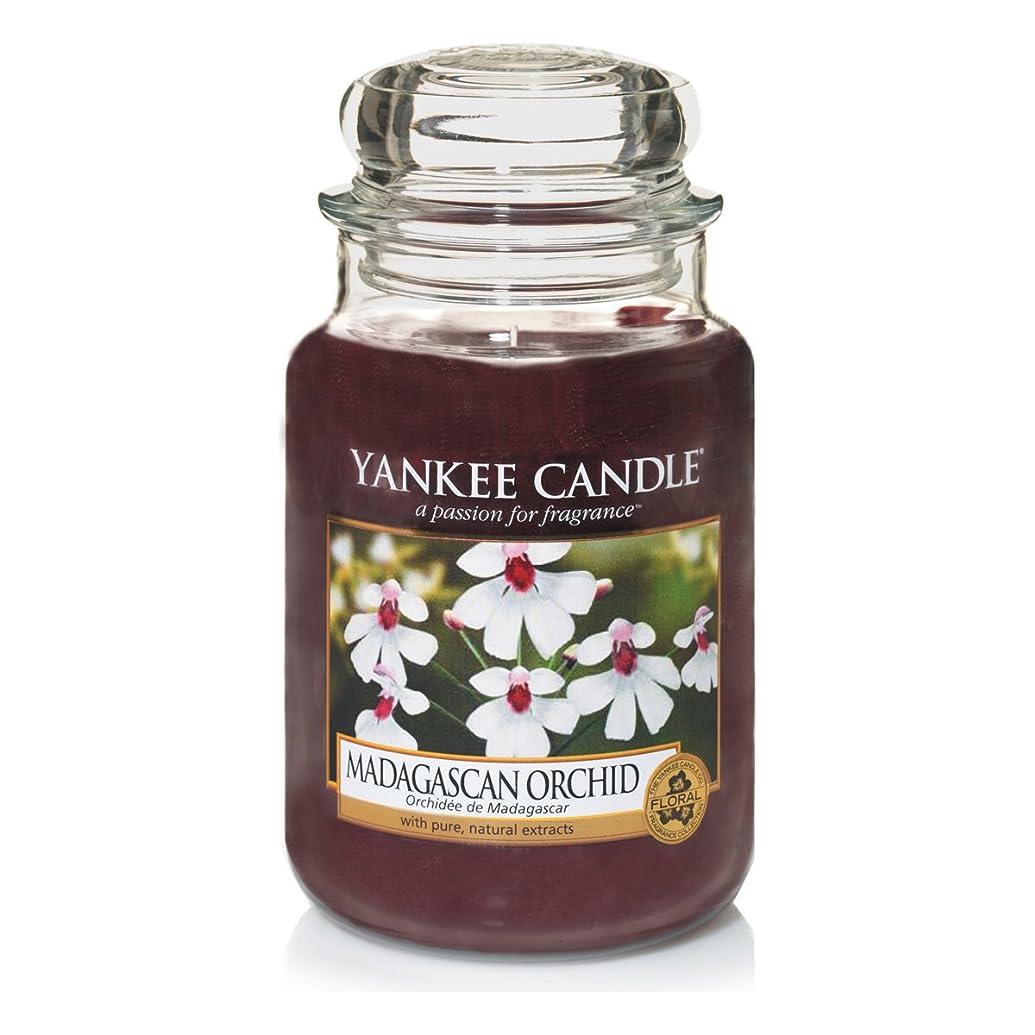 マイコン茎騒乱Yankee Candle Large Jar Candle, Madagascan Orchid by Yankee Candle