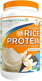 rice protein concentrate suppliers