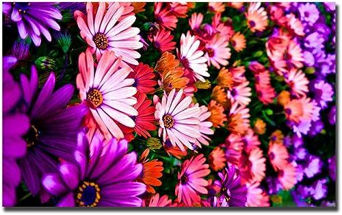 HPCAGLL Kit de Pintura de Diamante 5DCrystal Art Kits Punto de Cruz Bordado de Punto de Cruz Parojo de Flores Flor decoración de parojoDecoración Suministros para decoración de Parojo de salón,100x50