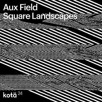 Square Landscapes