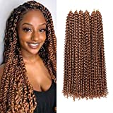 6 Packs Passion Twist Hair 18 Inch Water Wave Crochet Hair For Black Women 80g #30 Color C...