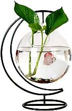 RuiyiF Desk Hanging Fish Tank Bowl with Stand Creative, Small Table Glass Fish Vase Aquarium for Home Decor (1 Fish Bowl)