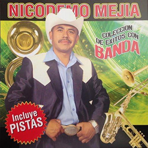 Nicodemo Mejia