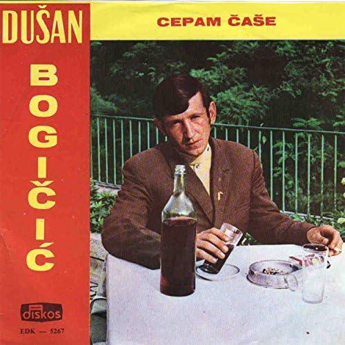 Dusan Bogicic