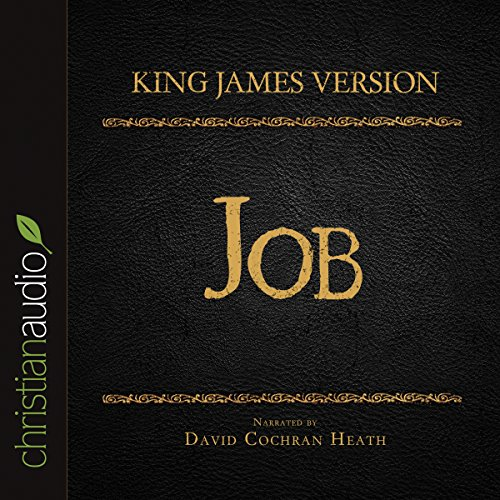 Holy Bible in Audio - King James Version: Job audiobook cover art