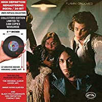 Flamingo (Vinyl Replica Collection) by Flamin' Groovies (2013-01-22)