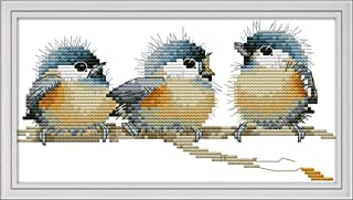 Cross Stitch Kits, Three Birds Awesocrafts Easy Patterns Cross Stitching Embroidery Kit Supplies Christmas Gifts, Stamped or Counted (Birds, Stamped)