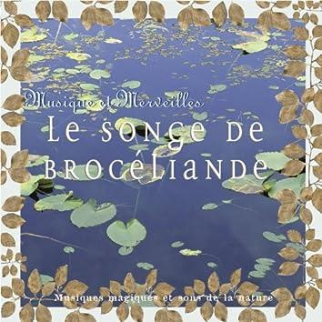 Musique et merveilles: le songe de brocéliande