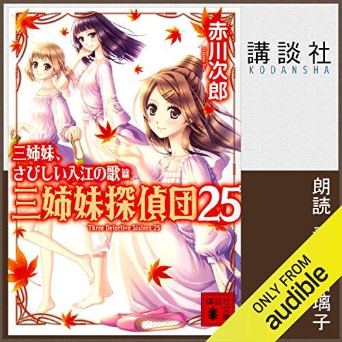 『三姉妹探偵団 25 三姉妹、さびしい入江の歌』のカバーアート