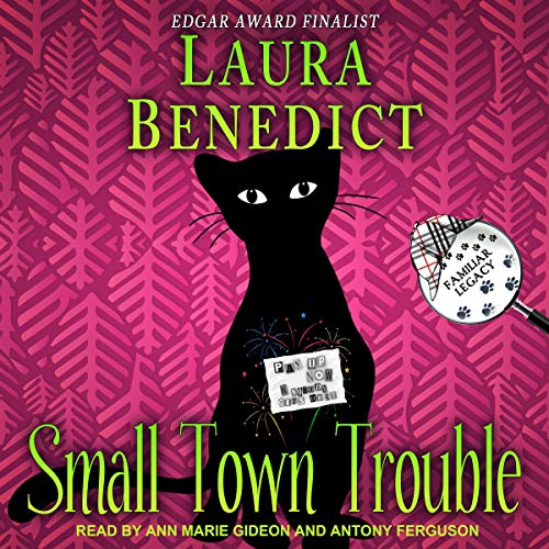 Small Town Trouble audiobook cover art