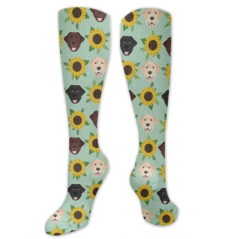 体操選手債務ポケット靴下,ストッキング,野生のジョーカー,実際,秋の本質,冬必須,サマーウェア&RBXAA Women's Winter Cotton Long Tube Socks Knee High Graduated Compression Socks Labrador Floral Sunflower Dog Socks
