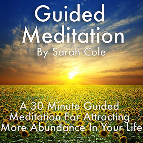 Guided Meditation: A 30 Minute Guided Meditation for Attracting More Abundance in Your Life audiobook cover art
