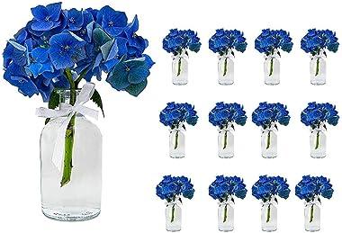 casavetro 12 x kleine Vasen Set New-Bost-100-Band inklusiver Glasfläschen Flasche Glas klar Deko Blumen-Vase Hochzeit (12 x 1