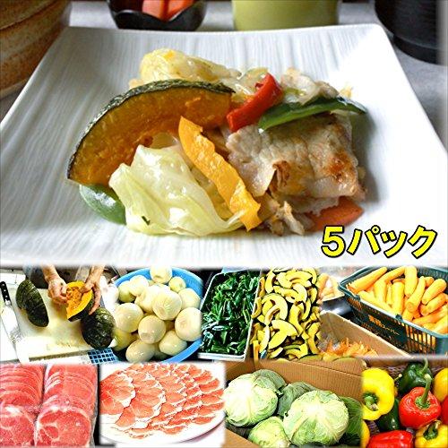 具たくさん肉野菜炒め 5食 惣菜 お惣菜 おかず 惣菜セット 詰め合わせ お弁当 無添加 京都 手つくり