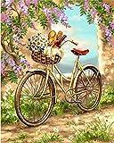 Pintar por Numeros Adultos Niños DIY Pintura por Números con Pinceles y Pinturas Principiantes Fácil sobre Lienzo Bicicleta en el jardín40 * 50 cm, Sin Marco