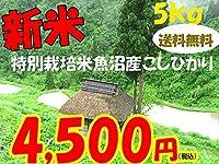 平成28年新潟県産特定産地米 (魚沼産特別栽培米5㎏)