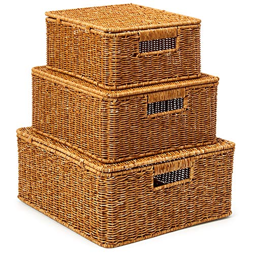 EZOWare Set of 3 Resin Woven Storage Basket Box with Lid, Wicker Hamper Shelf Organiser Bin Containers with Side Handles for Kitchen, Living Room, Bathroom, Bedroom - Natural Brown