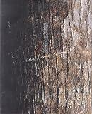 tomonori toyofuku; urbis orbis; urbi orbi