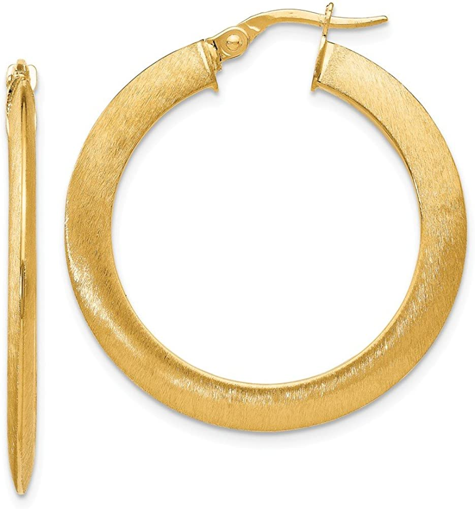 FB Jewels Solid Leslies Directly managed store 14K Yellow Hoop Gold Earr Hinged Brushed Cheap mail order shopping