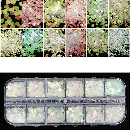 Nail Art Glitter Sequins Flakes 3D Butterfly Star Heart Flower Acrylic Paillette Holographic Nail Sparkle Glitter Decor Accessories for Nail Make Up 12 Grids/Sets