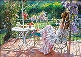 ししゅう糸 DMC糸 クロスステッチ刺繍キット 14CT 白地 花園ベランダ少女