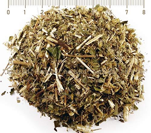 Goldrutenkraut Tee, Solidago Virgaurea L., Kräuter Stängel