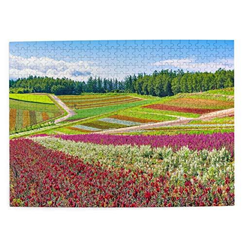 LiBei Puzzle 500 Piezas Adultos,Rompecabezas,Jardín de Flores de Colores Verano Shikisai No,Juegos Educativos,Entretenimiento Adultos,Niños y Adolescentes,Divertido Regalo