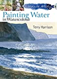 Painting Water in Watercolour (30 Minute Artist) - Terry Harrison