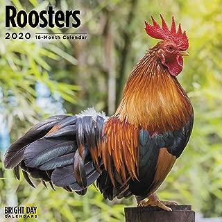 2020 Roosters Calendar 16 Month 12 x 12 Wall Calendar by Bright Day Calendars (Farm Animals Wall Calendar)