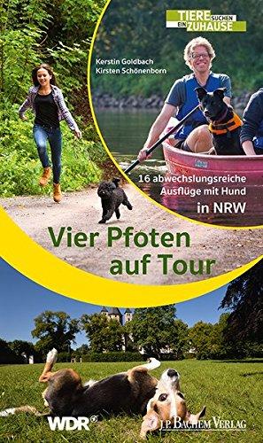 Vier Pfoten auf Tour: 16 abwechslungsreiche Ausflüge mit Hund in NRW*
