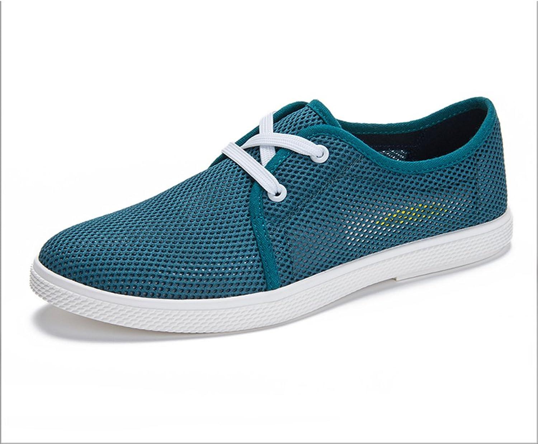 WLJSLLZYQ Mens Breathable mesh shoes Casual shoes Men Board shoes Pierced mesh shoes