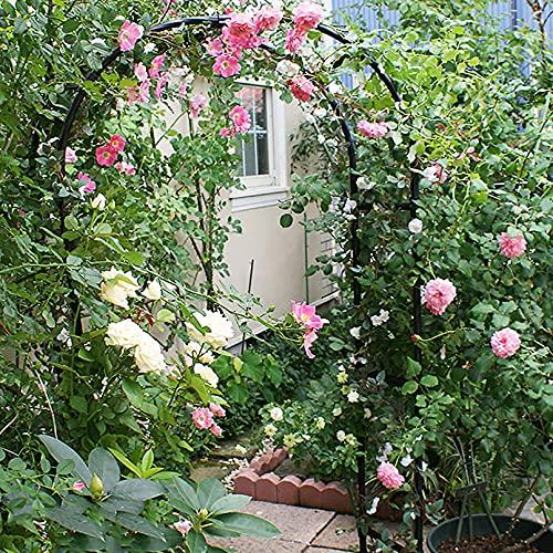 LJHSS Arco de Rosas Trepadoras,Metal Garden Arch,Metal Soporte para trepadoras para Plantas Trepadoras para jardín Exterior Eventos