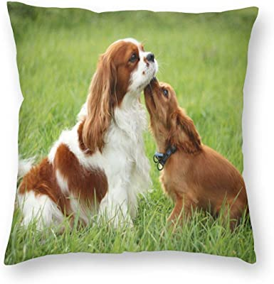 """BEVRRY Cavalier King Charles Spaniel Dogs Hot Home Decorative Square Throw Pillow Covers Seat Cushion Cases for Sofa Couch Car Bed 18""""x18"""""""