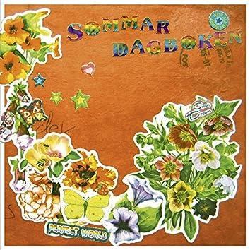 Sommardagboken