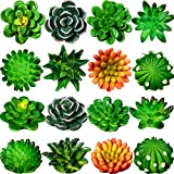 16 Pieces Cactus Succulent Refrigerator Magnets Plant Fridge Magnets Funny 3D Resin Stickers for Office Kitchen House