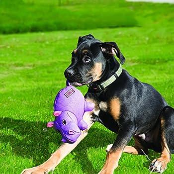 KONG - Phatz Pig - Jouet en peluche résistant pour chien avec couinement - Pour Chien Taille Moyenne