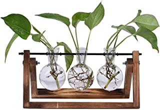 Desktop Glass Planter Bulb Vase, 3 Glass Bulb Vases with Retro Solid Wooden Stand for Hydroponics Plants Home Garden Wedding Décor