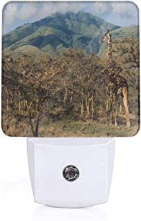 VANMASS Giraffe Prickly Acacias Grazing Mountain Auto On/Off LED Night Light