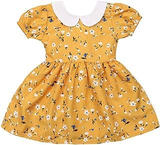 Kids Toddler Baby Girls Dress Outfit Ruffle Short Sleeve Floral Casual Tutu Skirt Playwear Princess Dress Summer