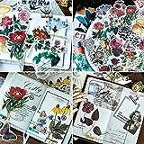 300 pcs Pegatinas Autoadhesivas para Manualidades,Pegatinas de Plantas Naturales para DIY Manualidades Decoración Scrapbooking Álbumes de Recortes Calendarios Tarjetas de Felicitación Regalos