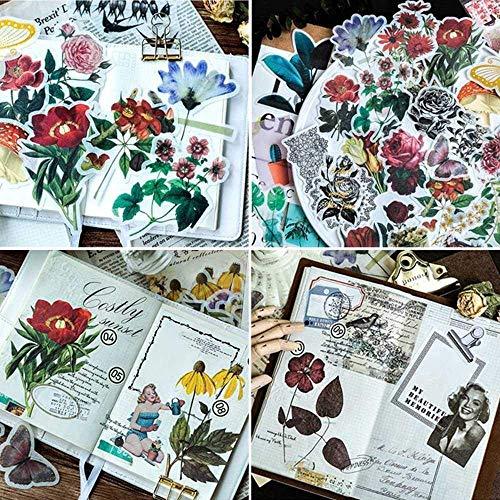 5set 300 pezzi adesivi,Stickers bambini e adulti,piante tropicali stile note adesivi Easy autoadesive fiori Roses Garden Wildflowers farfalle per scrapbook,cactus e succulente adesivi per il portatile