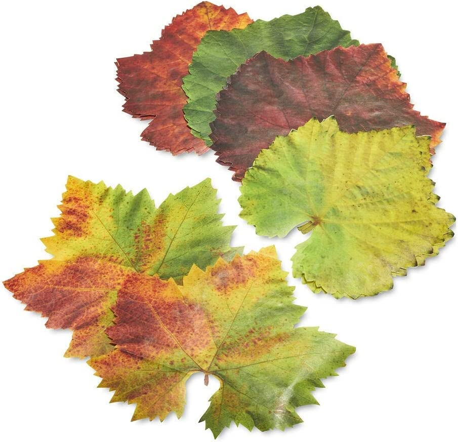 Parchment Grape Leaves Plate /& Table Decoration 20-leaves French Tradition Decor